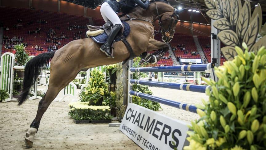 Chalmers smarta hinder på Gothenburg Horse Show 2016. Foto: Lottapictures /Lotta Gyllensten