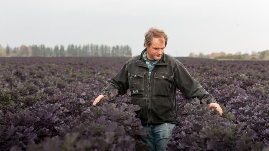 Mattias Hansson i ett fält med Flowersprouts