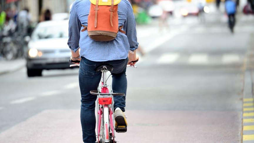 Sifo: De är mest hatade i trafiken
