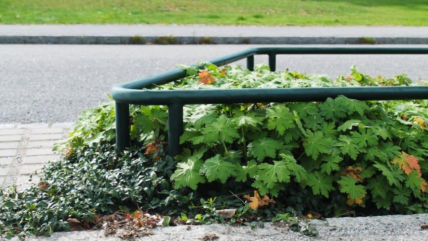 Planteringsräcke Flora