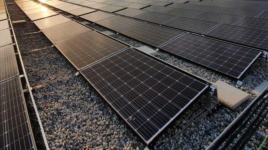 Norconsult skal levere rådgivningstjenester til realiseringen av Skandinavias største solcellepark. (Foto: Norconsult)