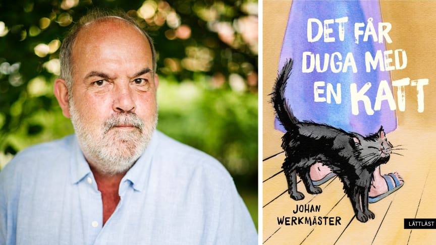 Den uppskattade lättlästförfattaren Johan Werkmäster är tillbaka med boken Det får duga med en katt.