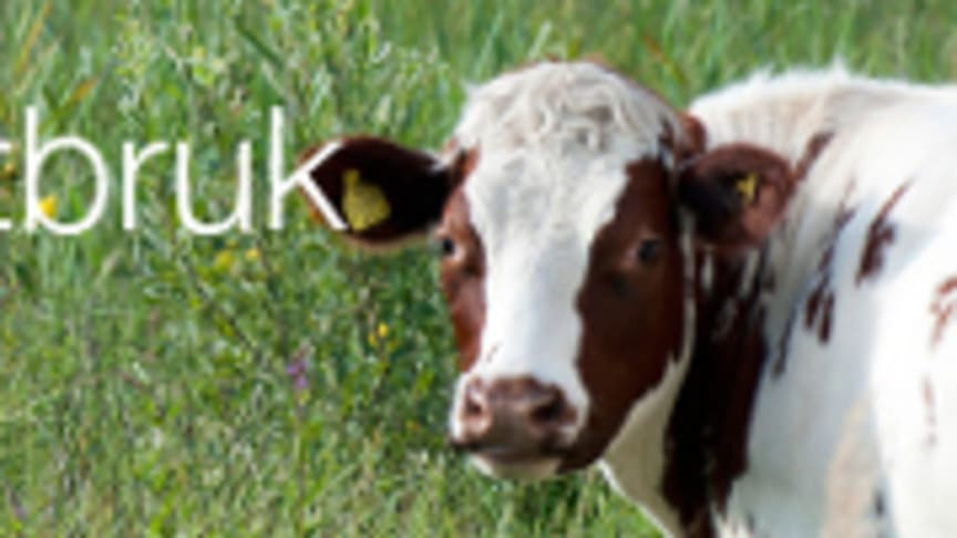 Besök oss på Elmia Lantbruk Djur & Inomgård 19-22 oktober