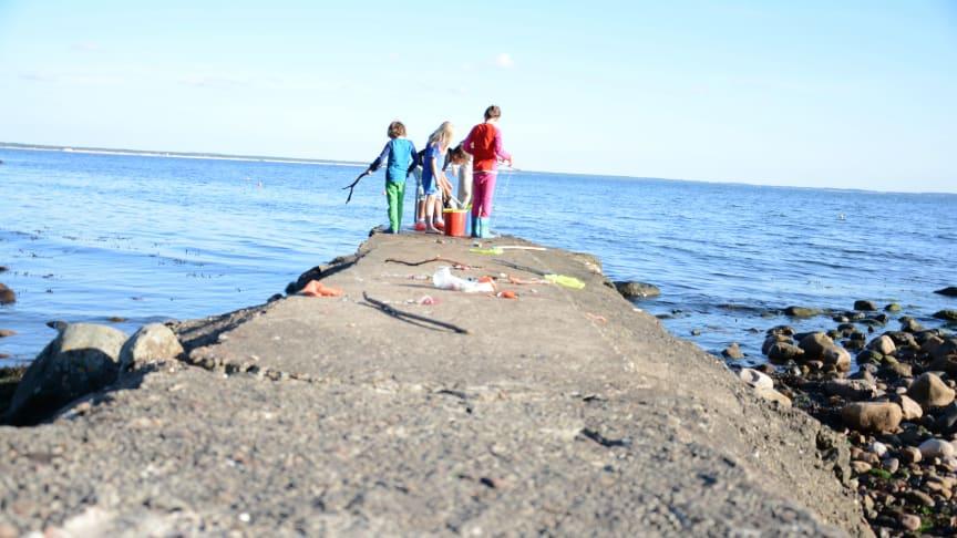 Krabbfiske under sommarkollot i Magnarp.