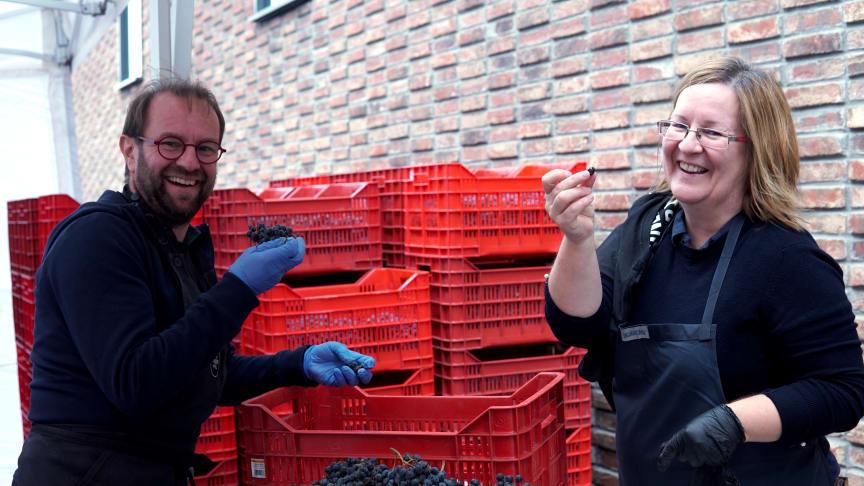 Ola & Marianne Mårtensson bor i Skåne men är nu i Stockholm för druvskörd på The Winery Hotel