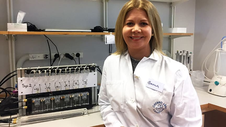Örebro universitets Rebecca Wall ska studera hur smörsyran påverkar tarmen och om den kan användas för att behandla folksjukdomen IBS.