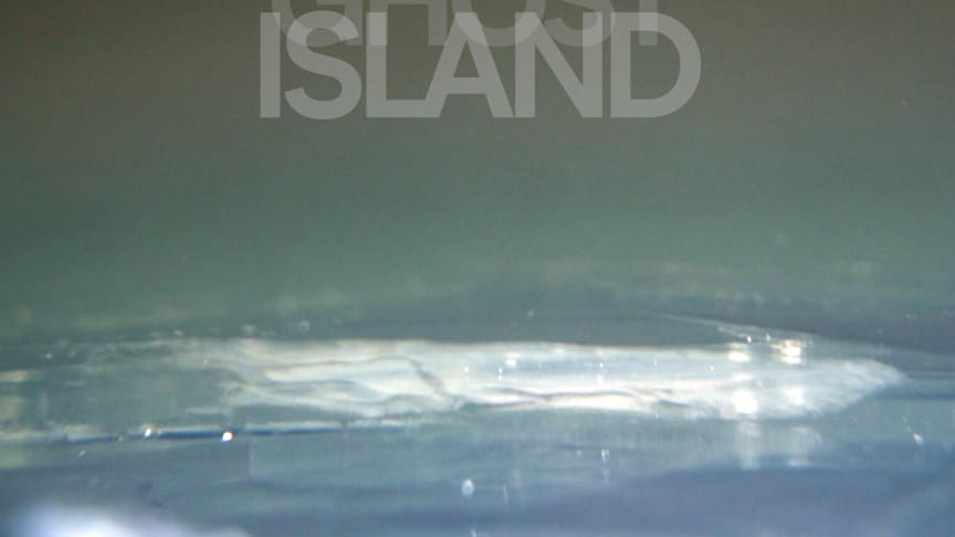 "Nya artistprojektet Bowski Island släpper singeln ""Ghost"""