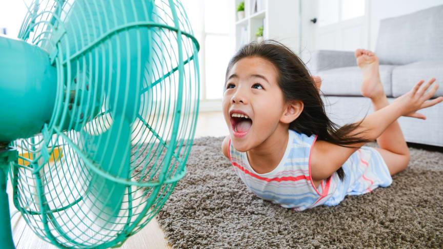 Elgiganten oplever utrolig efterspørgsel på ventilatorer på grund af den massive sommervarme og har solgt et køleprodukt i minuttet gennem de seneste uger.