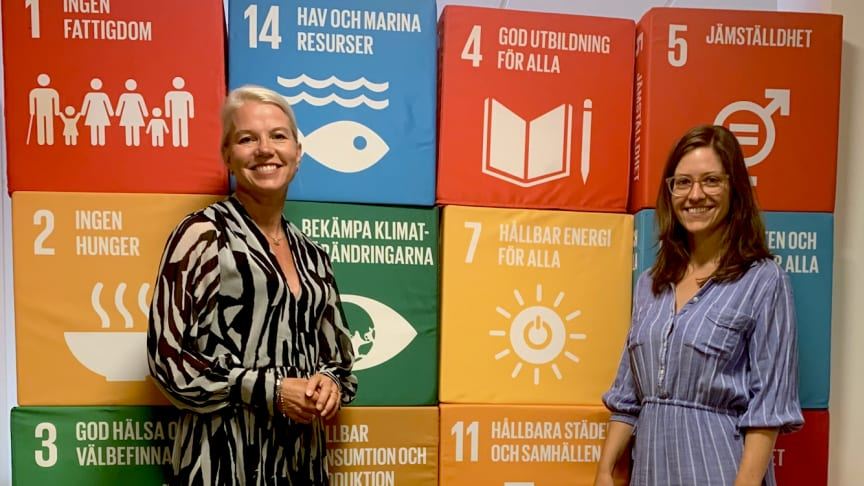 Vellinge kommun antar Program för hållbar utveckling