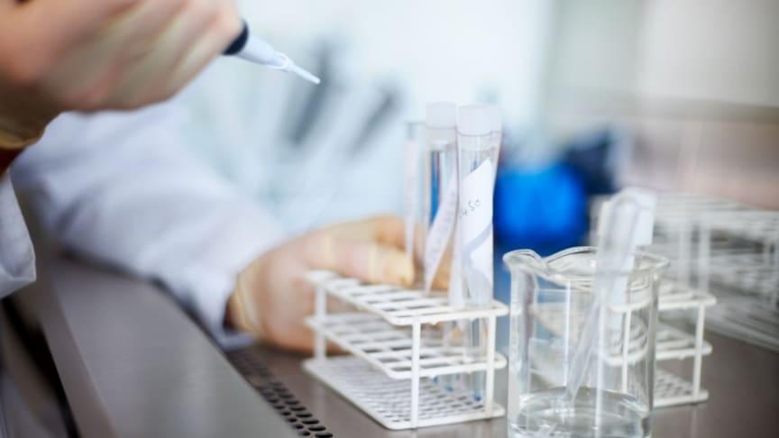 En forskargrupp får 30 miljoner kronor för miljötoxikologisk forskning