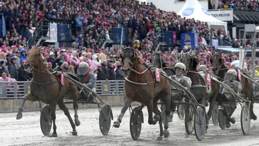 Dijon vinner Elitloppet 2019. Foto: Lars Jakobsson/TR Bild
