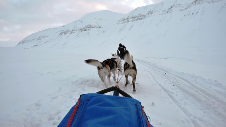 Telenor har iverksatt et pilotprosjekt på Svalbard hvor innovativ teknologi vil gi bedre indikasjoner på skredfare. Foto: Silje Birkelid