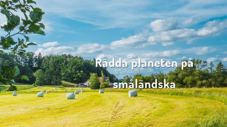Så kan vi värna om miljön genom smarta småländska spartips.