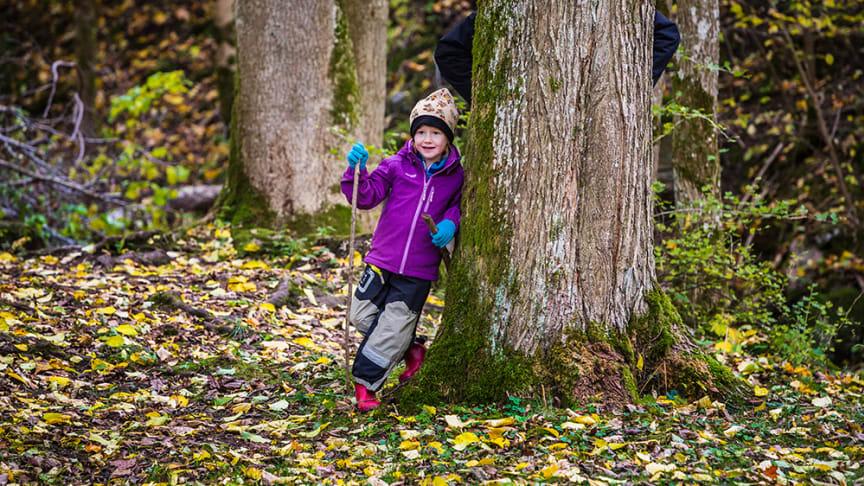 Vandring för barnen i fokus när Billingetrollets trollstig invigs. Foto: Mårten Bergkvist/Next Skövde