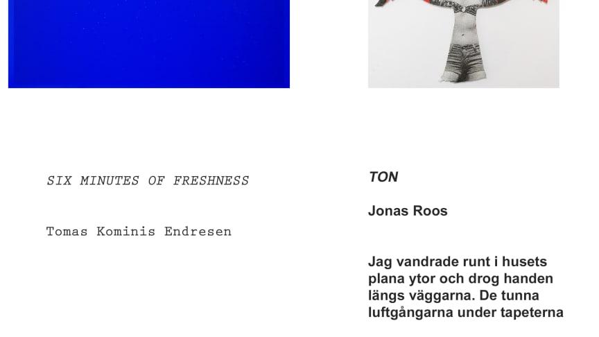 Examensutställningar: Tomas Kominis Endresen och Jonas Roos