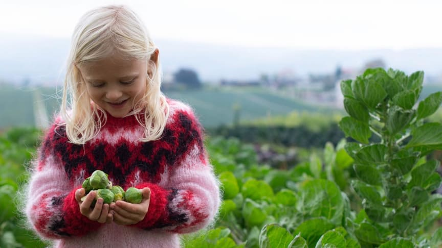 Telemark Landbruksselskap får støtte til drivhus, som skal bli en grønn møteplass for barn og unge på Århus Gård i Skien. (Foto: Hilde Amy Teie)