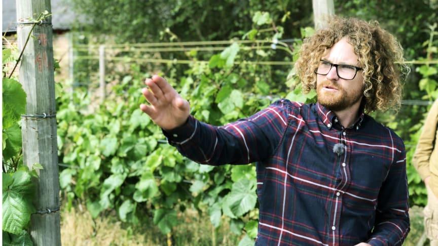 Vinbonden Victor Dahl på Kullabergs vingård