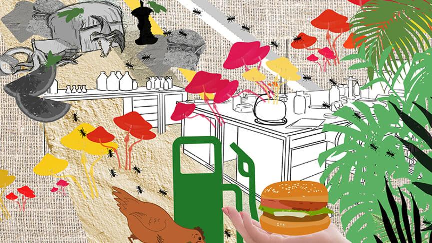 Illustration av Suss Wilén