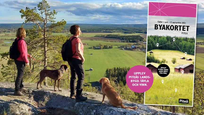Gölaberget - ett av många fina utflyktsmål i Piteås landsbygd.   Foto: Maud Nordwall
