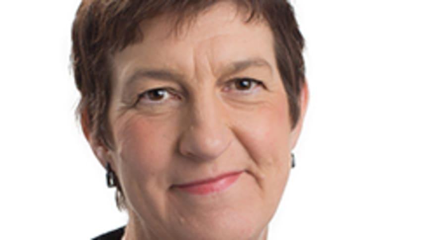 Elisabet Falemo, generaldirektör vid Elsäkerhetsverket Foto: John Persson