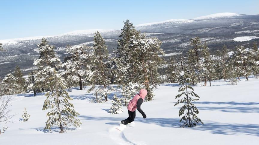 Stöten i Sälen har 21 liftar och 47 nedfarter. Mormors störtlopp är Dalarnas- och Sälens längsta nedfart med 3 060 meter åkglädje.