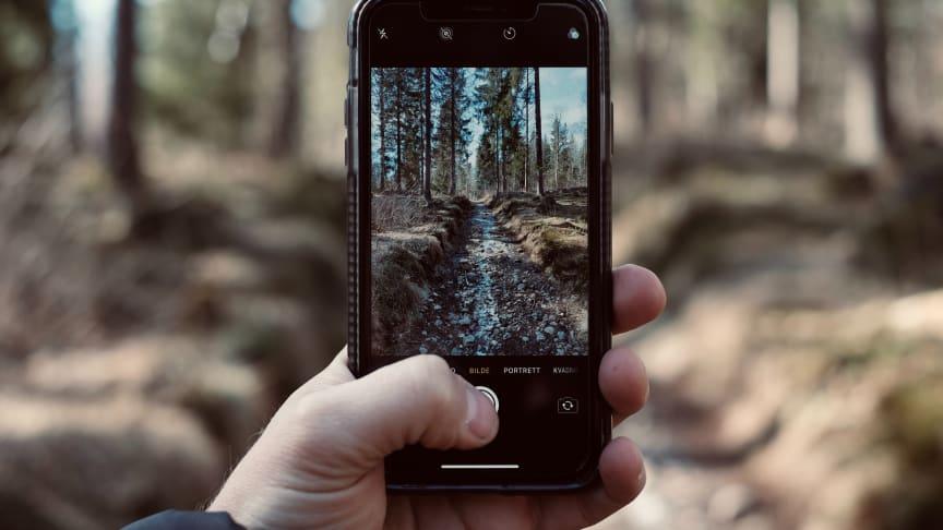 Ta vare på mobilen din i sommer. Her er tipsene! Foto: Fredrik Solli Wandem (Unsplash.com)