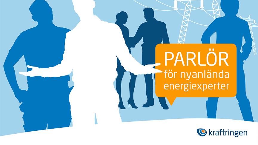 Kraftringen prisas för sin parlör för nyanlända energiexperter