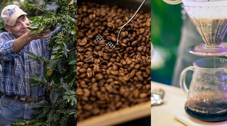 Paulig på förstaplats i Sustainable Brand Index i Finland