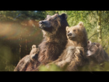 Center Parcs celebrates family time in new campaign