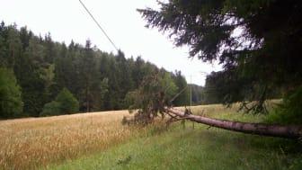 Sturmtief führt zu Stromausfällen im Bayernwerk-Netz