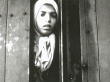 Romer på studieresa i Förintelsens fotspår