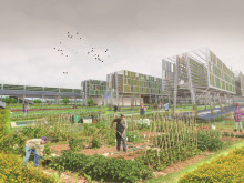 Architecture students reveal urban farm