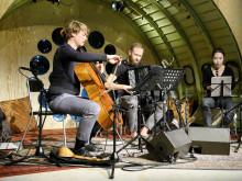 Αλληλεγγύη: Concert in Motion