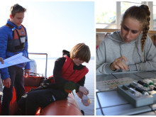 Neues Louisenlunder Forschungsprojekt: Junge plus-MINT-Talente untersuchen Wasserqualität der Schlei