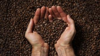 Succé för räddat kaffe – Circle K och Löfbergs breddar samarbete mot matsvinn