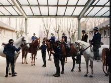 Mounted Branch celebrate 100 years of training at Imber Court