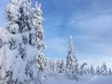 Lei ski fra SiO Athletica