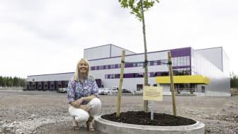 - Istället för att klippa band valde vi att plantera ett träd, en ek som kan växa i takt med företaget och familjen. En hälsning till tidigare och kommande generationer från familjen Löfberg i 3:e, 4:e och 5 generationen, säger Kathrine Löfberg.