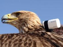 Fågelperspektiv från världens högsta byggnad med Action Cam Mini