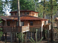 New luxury Treehouses at Elveden Forest