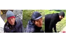 Merton burglary appeal