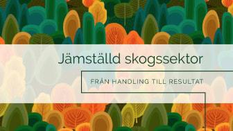 """Förstasidan på inbjudan till den digitala konfernsen """"Jämställd skogssektor – från handling till resultat""""."""