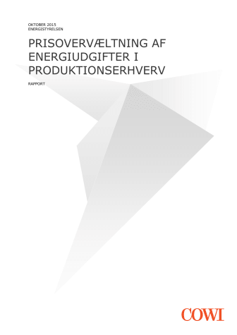 PRISOVERVÆLTNING AF ENERGIUDGIFTER I PRODUKTIONSERHVERV
