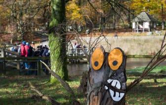 Trolljakt under Höst i Djurparken