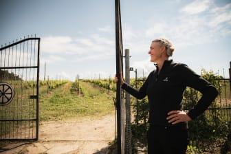 Besök en vingård
