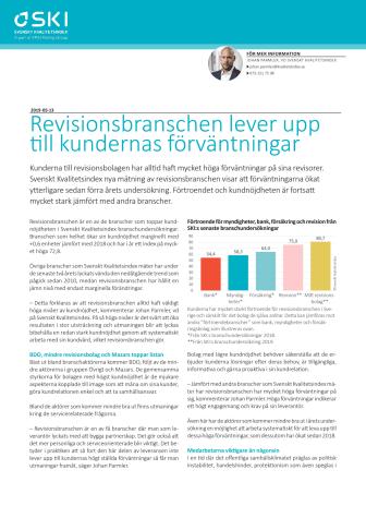 SKI branschrapport revisionsbranschen 2019