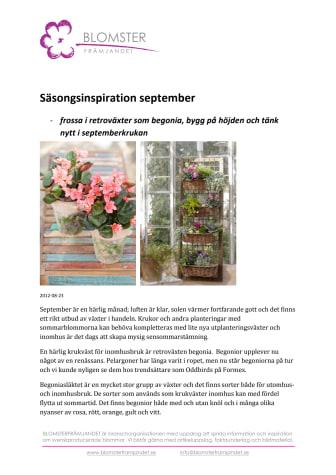 Säsongsinspiration september - frossa i retroväxter som begonia, bygg på höjden och tänk nytt i septemberkrukan