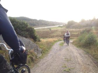Cykling, Pilane