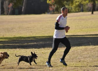 Discovery Vitality CEO Gidon Novick runnig with his dogs at the parkruns launch