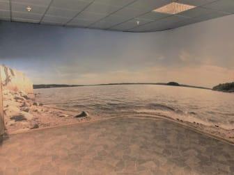 Fondbild med svensk kust.jpg